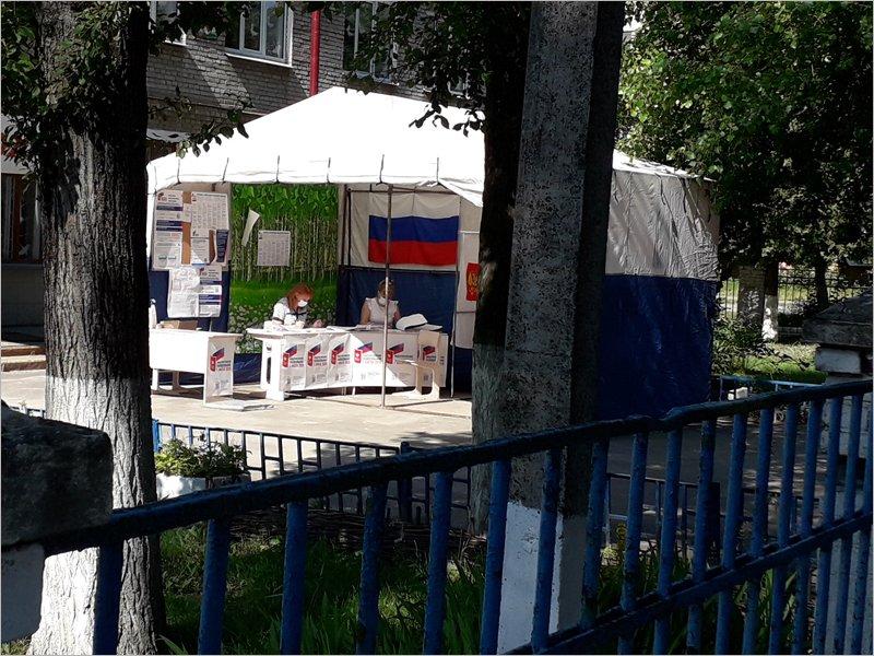 Явка на общероссийском голосовании в Брянской области уже добралась до уровня 56%