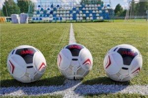 Брянское «Динамо» получило новые официальные мячи
