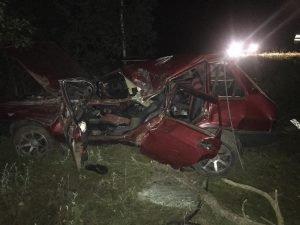 В Климовском районе погиб водитель, разбивший свою «девятку» об дерево