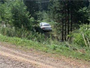 Недалеко от Хацуни лихач улетел с «Украины» в дерево