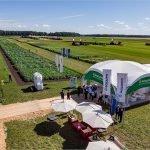 «ФосАгро-Регион» продемонстрировала брянским аграриям возможности повышения рентабельности производства сельхозпродукции