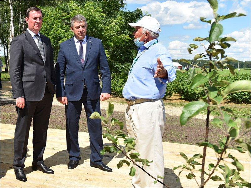 Памятником Всероссийскому дню поля в БГАУ останется яблоневый сад