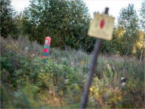 На брянском участке российско-белорусской границы в сентябре поймано 80 нарушителей