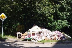 В Брянске разыскиваются устроители огромной свалки в центре города