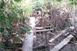 На дороге между Жуковкой и Вышковичами обрушился мост