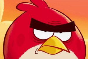 Angry Birds требуют от депутата брянской облдумы $24 000