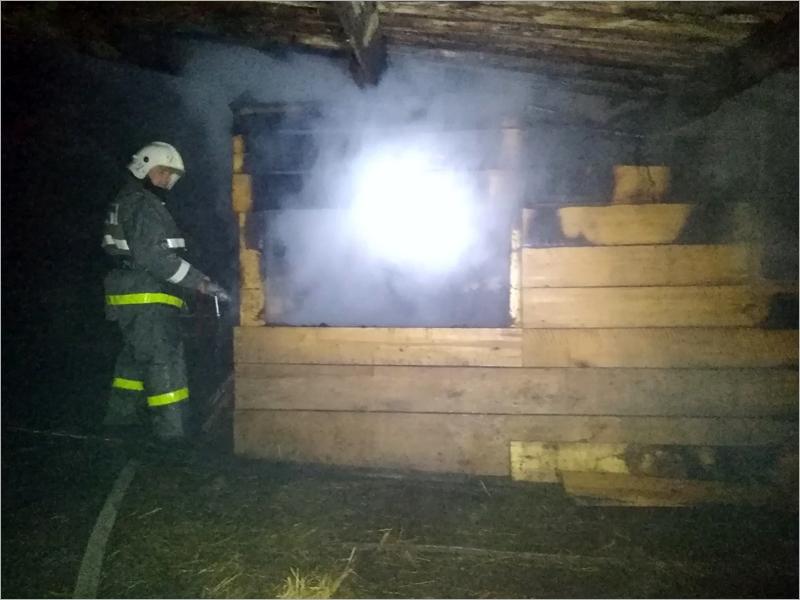В почепской деревне в сгоревшем сарае погиб мужчина