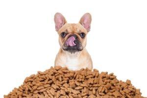 Почти 60 тонн итальянских кормов для животных не прошли брянский ветконтроль