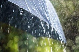 Прогноз на 26 августа: дождь весь день