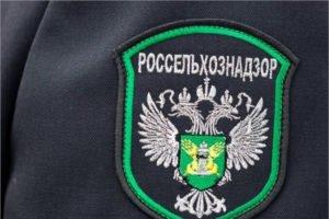 В Брянской области с начала года выявлено почти три десятка предприятий-фантомов