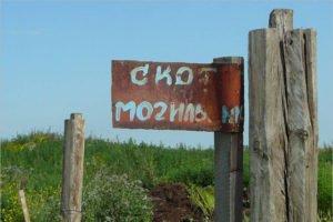 В восьми брянских муниципальных районах полностью ликвидированы скотомогильники