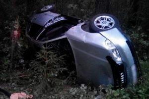 Под Жуковкой водитель иномарки погиб после вылета в кювет