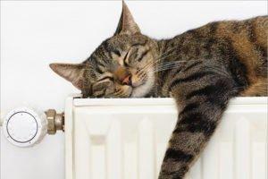 Отопление в Брянске  будет включено с понедельника – Макаров