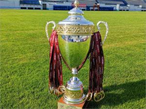 Брянское «Динамо» получит в субботу золотые медали и кубок за прошлый сезон