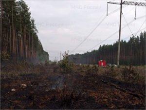 Под Карачевом пожарные пять часов тушили горящий лес