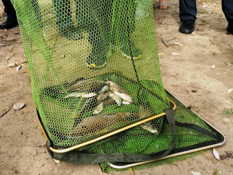 Самый большой улов на «Брянской рыбалке-2020» потянул на 2,7 килограмма