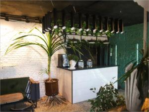 В историческом доме в центре Брянска открылось греческое быстрое кафе