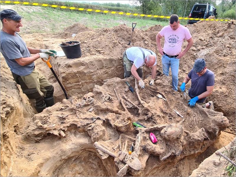 Брянские поисковики подняли в Почепском районе останки красноармейцев, погибших в 1941 году