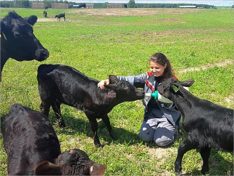 «Мираторг» передал БГАУ сельскохозяйственных животных для обучения студентов