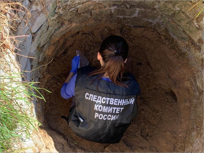 Житель Унечи, по пьяни убивший и прикопавший в колодце отчима, получил 8,5 лет