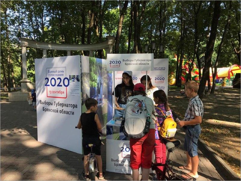 На улицы Брянска вышли «Волонтёры ЕДГ»