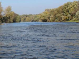 Расчистка русла Десны в Брянске начнётся уже в текущем году