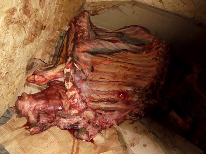 В Брянской области уничтожили почти 1,7 тонны «неведомого» мяса