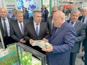 Брянская зелень появится на прилавках белорусских торговых сетей