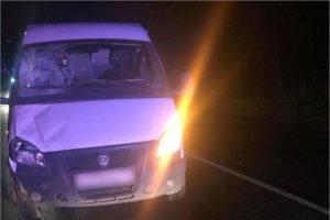 В Дубровском районе в темноте пешеход погиб под колёсами «ГАЗели»