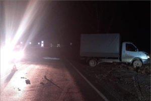 За один день под колёсами на брянских дорогах погибли трое пьяных пешеходов