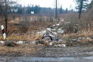 На дятьковской трассе под колёсами погибла велосипедистка