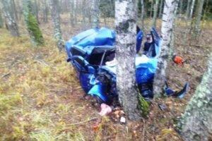 В столкновении с деревьями под Климово погиб 43-летний водитель