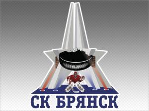 Хоккейный «Брянск» лишился зрителей на ближайшие домашние матчи