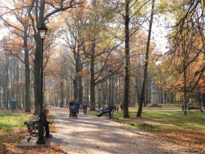 В парке Пушкина в Брянске «решили вместе» обустроить детскую площадку