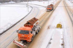 На федеральные трассы в Брянской области за день высыпали больше 50 тонн песка с солью