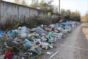 От брянских властей активисты потребовали ликвидации «мусорных валов» и «мусорных курганов»