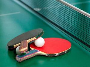 Чемпионат области по настольному теннису состоялся в Брянске