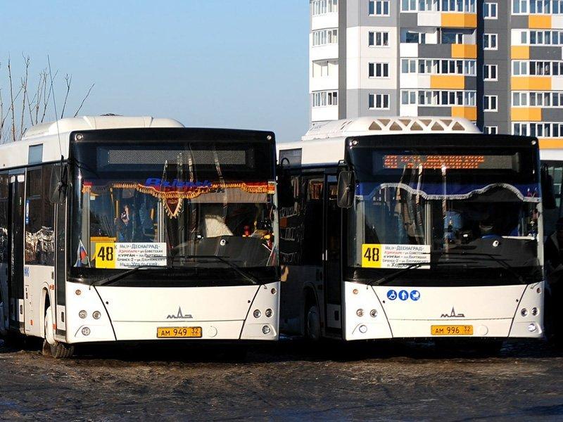 Новые брянские маршруты № 48 и 48к появились на карте «Умного транспорта»