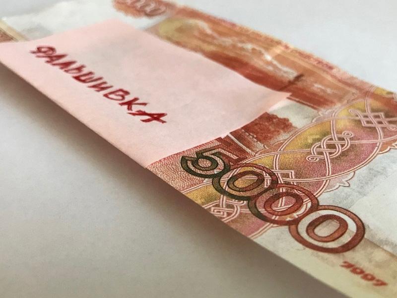 Полиция разыскивает сбытчицу фальшивых денег из Унечи