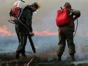 Для брянской лесопожарной службы закупили новое оборудование