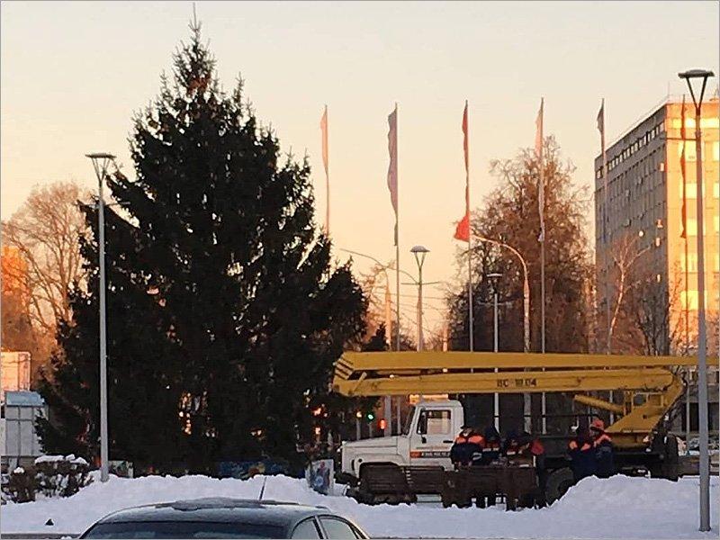 В Брянске установлена новогодняя ёлка на площади Воинской Славы