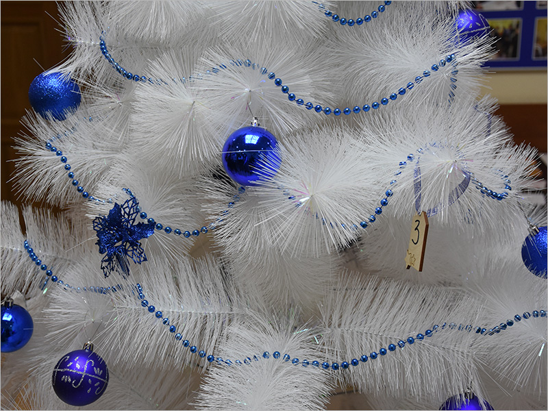 Брянские волонтёры-единороссы исполнят новогодние детские просьбы с «Ёлки желаний»