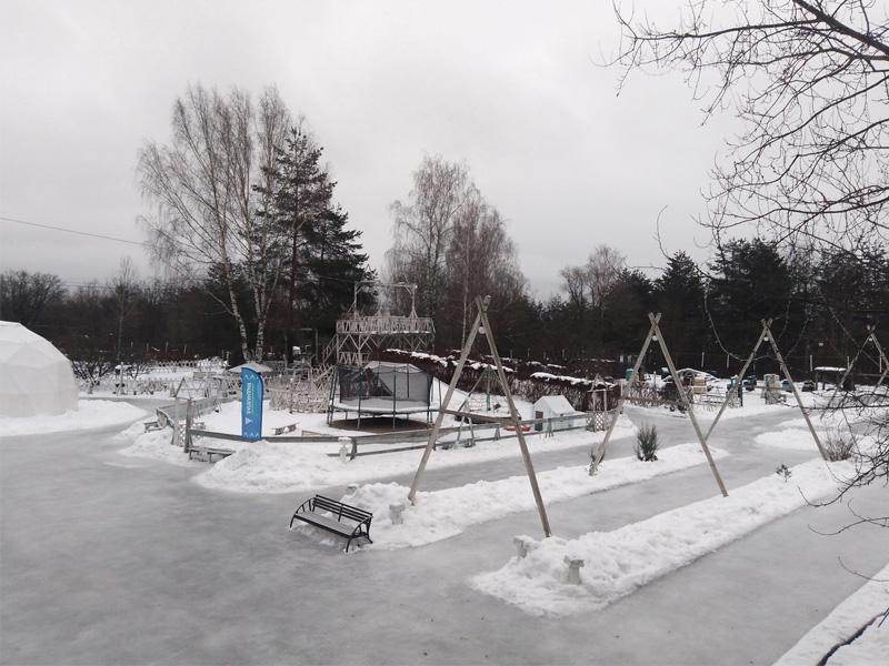 В Брянской области откроют более 500 хоккейных кортов, катков и лыжных трасс