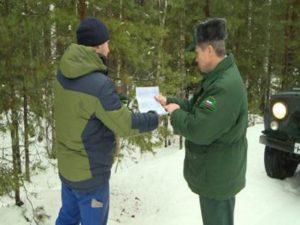 Брянские лесники пока не выявили ни одного «новогоднего» браконьера