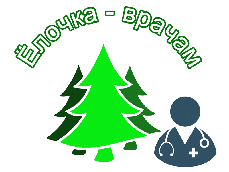 «Ёлочка – врачам»: брянские лесники обеспечат брянские больницы новогодними ёлками