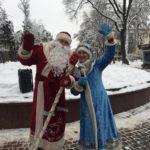 В Брянске установили главную городскую ёлку