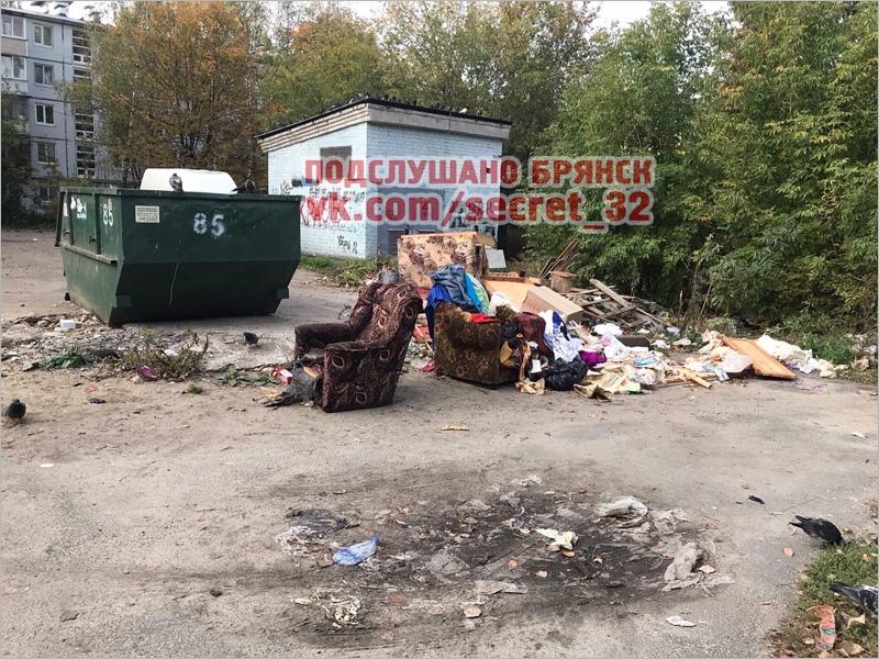 В Брянске в мусорном контейнере обнаружено мумифицированное тело женщины