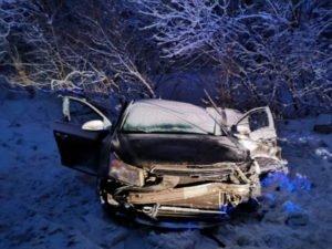 В жутком массовом ДТП в Брянском районе погибли водитель и 12-летний пассажир