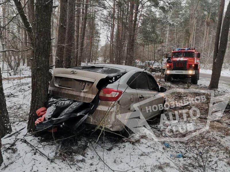 Водитель легковушки не рассчитал скорость и врезался в дерево под Новозыбковом