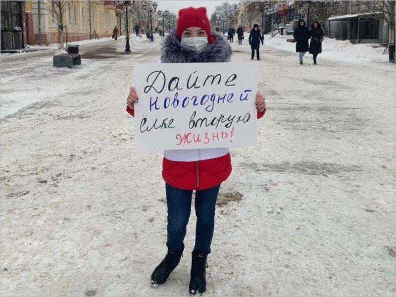 Брянские молодогвардейцы вышли на пикеты за еловую утилизацию